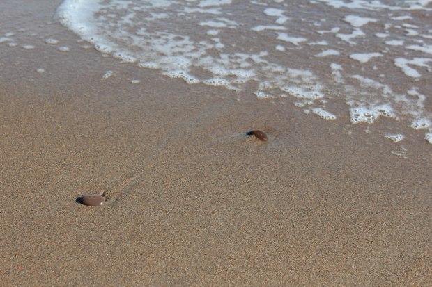 Rolige bølger slår opp på stranden
