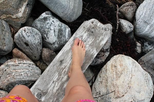 Barføtt på drivved i fjæresteinene