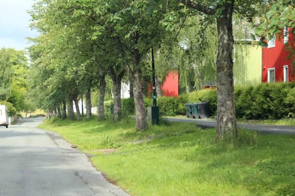 Gater på Øya i Trondheim