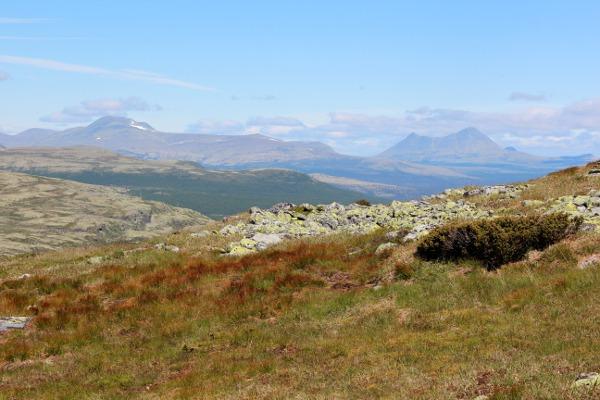 Utsikt fra Ringebufjellet mot Rondane